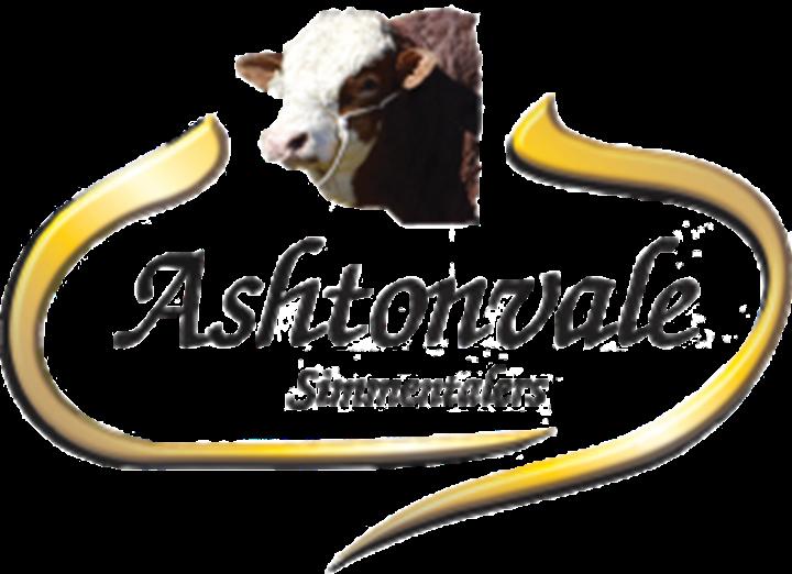 Ashtonvale Simmentalers