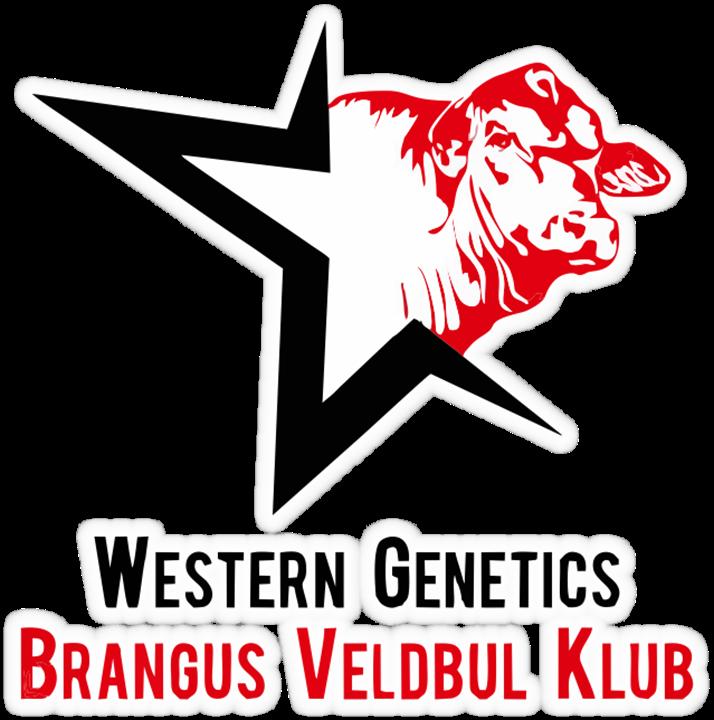 Western Genetics Brangus veldbulveiling, Boshof