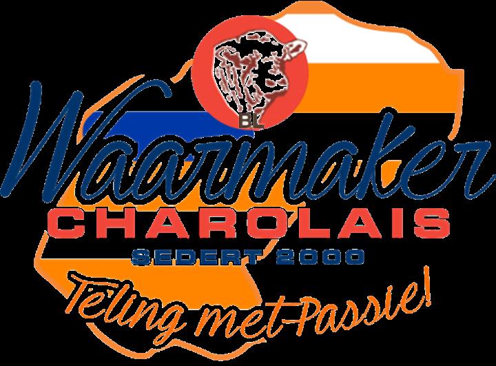 Waarmaker Charolais Veiling
