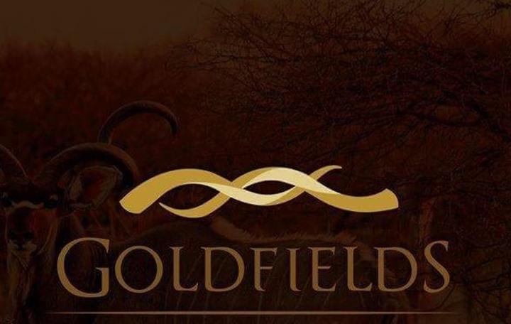Goldfields Trofee & Genetika Wildsveiling