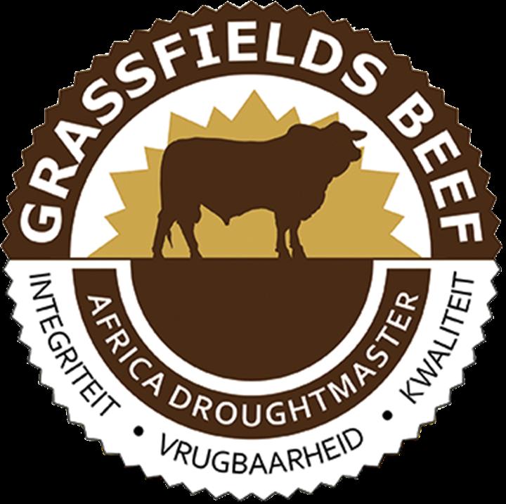 Grassfields Beef & Africa Droughtmasters Produksieveiling